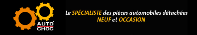 Des pièces détachées pour Opel Sintra sont à retrouver sur autochoc.fr